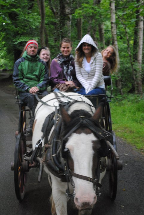 Jaunting cars through Killarney, Ireland