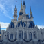 Everything You Need To Know About Visiting Disney As An Adult