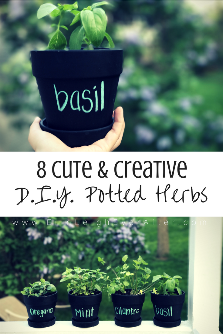 DIY Potted Herbs