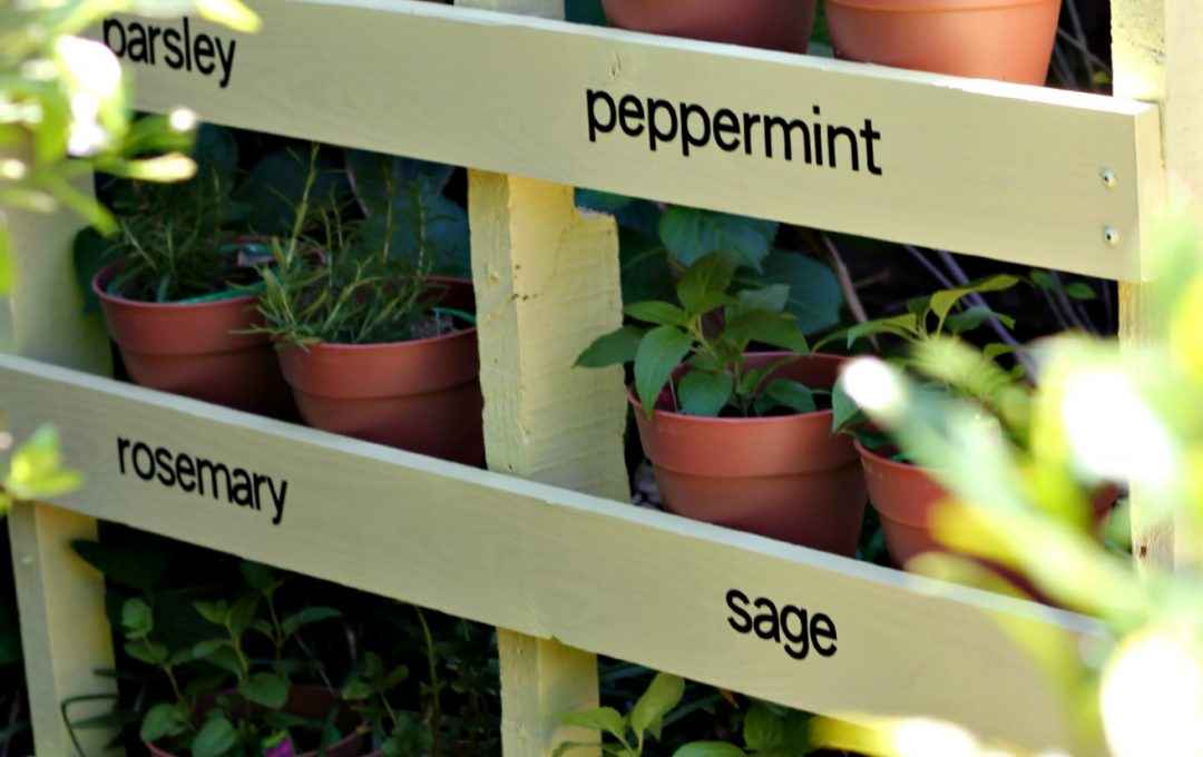 pallet diy potted herbs